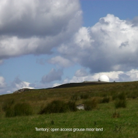 Territory: open access grouse moor land